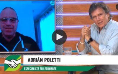 «Esta bueno incorporar legumbres como Garbanzo y Arveja en la rotación» Adrián Poletti – Agrositio