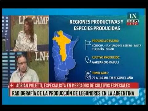 Radiografía de la producción de legumbres en la Argentina